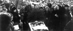 Похороны В.Т. Шаламова. Панорамная фотография (2)